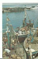 Pakistanfishermen At Work Karachi - Pakistan