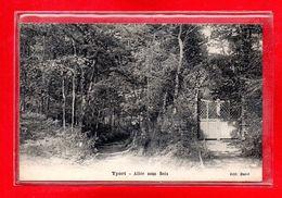 76-CPA YPORT - Yport