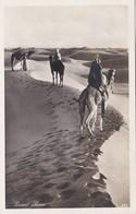 DESERT SCENE - Other