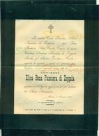 BRESCIA-CONTESSA ALISA BONA PANCIERA DI ZOPPOLA-1903-+ BUSTA-AFFRANCATA COL 2 CENT. - Avvisi Di Necrologio