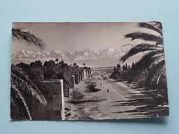 Le Long Des Remparts ( 39 - Bertrand ) Anno 19?? ( Zie Foto Detail ) ! - Marrakech