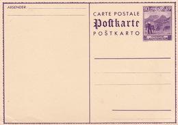 MiNr. P 13 Ungebraucht (br3071) - Enteros Postales