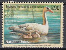 UN Geneve 1995 (MNH) - Coscoroba Swan (Coscoroba Coscoroba) - Swans