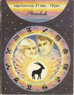 CAPRICORNUS STEENBOK STERRETEKEN ASTROLOGIE DIERENRIEM HOROSCOOP - Books, Magazines, Comics