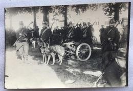 Foto Photo - WO I België Belgique - HONDENKAR  DOG-CART ATTELAGE CHIEN - MITRAILLEUSE MITRAILLEUR - SOLDATEN SOLDATS - War 1914-18