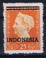 Netherlands East Indies : NVPH Nr 361 Postfrisch/neuf Sans Charniere /MNH/** 1948 - 1949 - Niederländisch-Indien