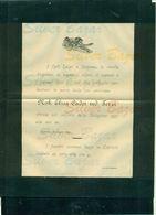 CAPRIOLO - 1899- NOBILE ELISA CADEI VEDOVA TERZI + BUSTA AFFRANCATA COL 2 CENT. - Avvisi Di Necrologio