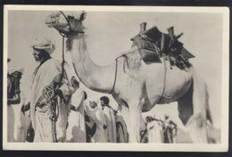 ETHNIC COSTUME SUDAN OLD POSTCARD - Sudan
