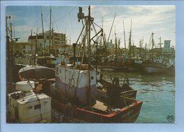 Saint-Gilles-Croix-de-Vie (85) Le Port 2 Scans Chalutiers 30-07-1981 - Saint Gilles Croix De Vie