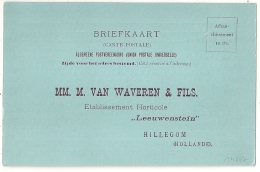 FLEUR HOLLANDE TULIPE CARTE POSTALE NEUVE Pour HILLEGOM. VAN WAVEREN - Unclassified