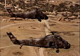 AVIATION - Aviation Militaire - Hélicoptère Westland Wessex - Elicotteri