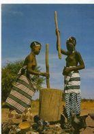Jeunes Filles Peul En Haute Volta , Femmes Seins Nus - Cartes Postales