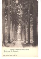 Environs De Louvain-Leuven-Château De Neerysche-Neerijse-Neeryssche (Huldenberg)+/-1900 (précurseur)-Drève Des Hêtres - Huldenberg