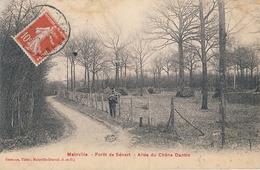 MAINVILLE - FORET DE SENART - ALLEE DU CHENE DANTIN - Draveil