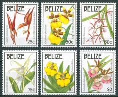 1992 Belize Orchidee Orchids Orchidèes Fiori Flowers Blumen Fleurs MNH** Fio177 - Belize (1973-...)
