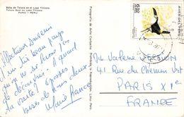 PERÚ - PICTURE POSTCARD 1997 CUSCO -> PARIS/FRANCIA - Peru