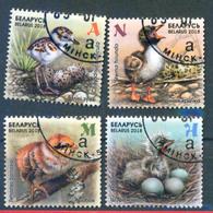 Belarus 2018 Birds Chicks Bird Fauna 4v Used - Belarus