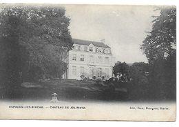 Espinois-lez-binche, Chateau De Jolimetz, Circulé En 1910 - Binche