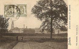SCHELLE -L'ancienne Abbaye St. Bernard - Edit. Nels - Schelle