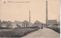 Tricotfabriek - Beernem