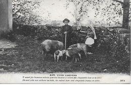 87 -  SAINT SULPICE LAURIERE  - 1924 TYPES LIMOUSINS SONT JOLIS NOS COCHONS VALENT 150 F EN FOIRE CARTE INEDITE !  MFA - Autres Communes