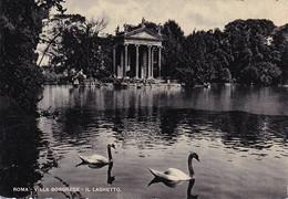 AK Roma - Villa Borghese  - Il Larghetto (33147) - Roma
