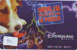 Carte Disney - Disneyland Paris Parc Disney's (42)  * Passeport Euro Disneyland PASSE-PARTOUT - Disney