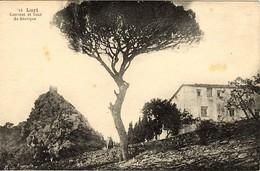 CORSE - LURI - L'ANCIEN COUVENT SAINT NICOLAS AU PIED DU ROCHER DE LA TOUR DE SENEQUE - France