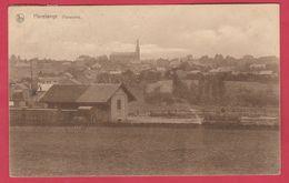 Havelange - Panorama ... De La Localité ... Bâtiment Chemin De Fer - 1929 ( Voir Verso ) - Havelange