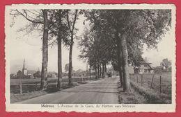 Melreux - L'Avenue De La Gare, De Hotton Vers Melreux ( Voir Verso ) - Hotton