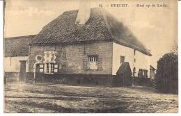 """BRECHT """" HOEF OP DE LOCHT"""" - Brecht"""