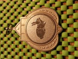 Medaille  / Medal - E.N.P.K.V. - Klein Dierenvereniging Wierden 1990 - Konijn- Rabbit - Hase - Lapin - The Netherlands - Pays-Bas