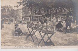 """Salon De Paris 1910 . """" Marché Aux Oiseaux   """" Tableau De R. BLOOS - Mercati"""