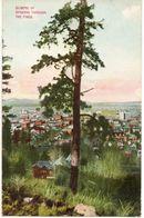 Etats Unis. Glimpse Of Spokane Through The Pines - Spokane
