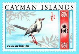 Islas Cayman Islands. 1970. Scott # 262. Bird. Cayman Thrush - Caimán (Islas)