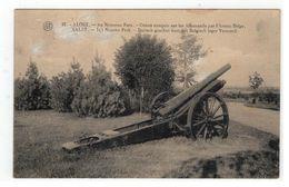 37. - AALST. - In 't Nieuwe Park - Canon Conquis Sur Les Allemands Par L'Armée Belge  Afgestempeld 1925 - Aalst