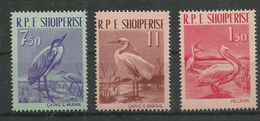 ALBANIA - MNH - Animals - Birds - Pelikan - Pájaros