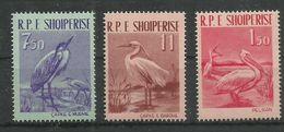 ALBANIA - MNH - Animals - Birds - Pelikan - Other