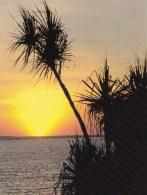 Australia - Sunrise At Fannie Bay, Darwin, NT Unused - Darwin