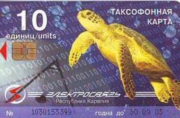 Télécarte * GREECE  (2366) TORTUE * TURTLE *  Phonecard * SCHILDKRÖTE * TELEFONKARTE - Turtles