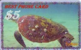 Télécarte * USA  (2369) TORTUE * TURTLE *  Phonecard * SCHILDKRÖTE * TELEFONKARTE - Turtles
