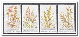Bophutswana 1981, Postfris MNH, Plants - Bophuthatswana