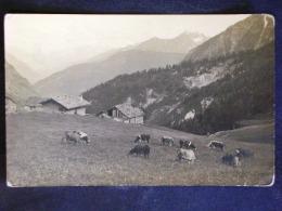 VAL D'AOSTA -AOSTA -VAL FERRET COURMAYEUR -F.P. LOTTO N°629 - Aosta
