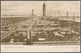 Union Stock Yards, Chicago, Illinois, C.1900-05 - Koelling & Klappenbach U/B Postcard - Chicago