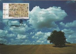 Australia 2017 Postally Used Maximum Card,sent To Italy,1995 Australia Day Kyte Flying - Maximum Cards