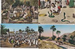 Algérie. Lot De 4 CPA - Scènes & Types