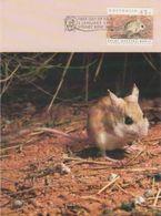 Australia 2017 Postally Used Maximum Card,sent To Italy,1992 Threatened Species,Dusky Hopping-Mouse - Maximum Cards