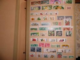 Lot Timbres Neufs Tous Pays Dont Thématique Fleurs Sur 6 Pages. - Stamps