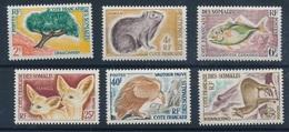 PF-84: COTE DES SOMALIS: Lot  Avec N°305/310** - Unused Stamps