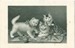 Kat Chat Cat Katz - Sperlich - 1912 - Chats